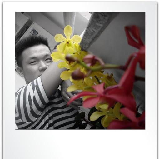 Cam Luu Photo 21