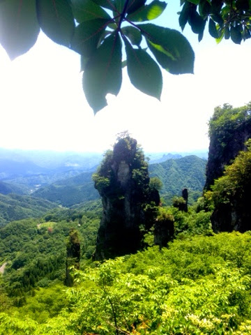 新緑の「日暮らしの景」