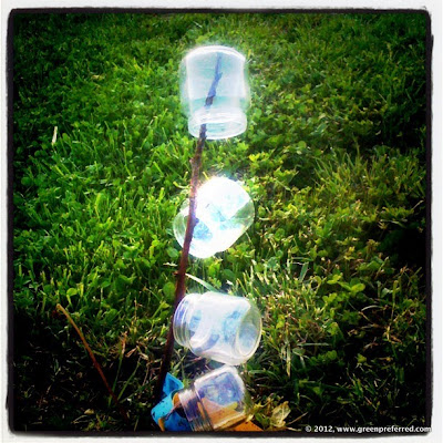 Bottle Bush Art