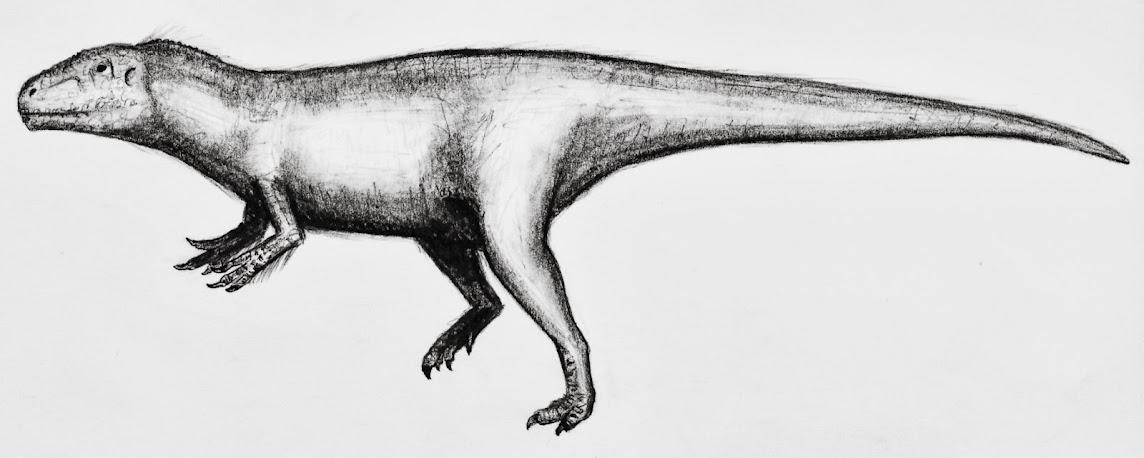 eure dinosaurier-Bilder - Seite 2 Sauroniops_pachytholus