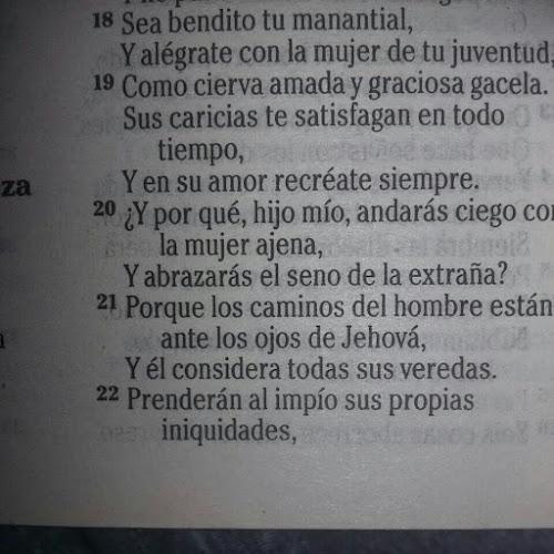 alejandro ayala_2