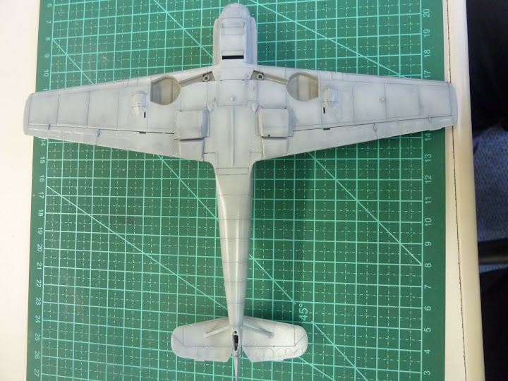 Bf-109 E-3 Tamiya 1/48 - Reforma pintura P1020493