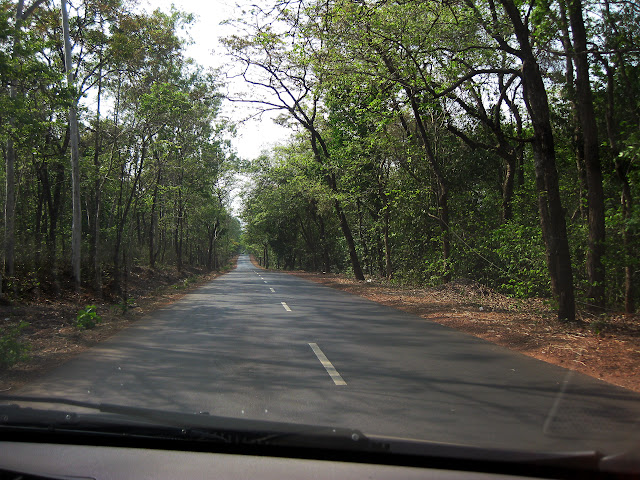 road through mountain on nh17, near karnataka border