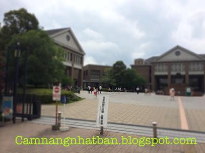 Cẩm Nang Nhật Bản: Cuộc Sống, Văn Hóa, Con người Nhật