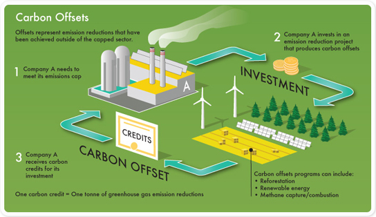 carbon credits thesis Available methods carbon farming what can i do on farm to earn a carbon credit  earning carbon credits by managing stock to allow native forest to grow.