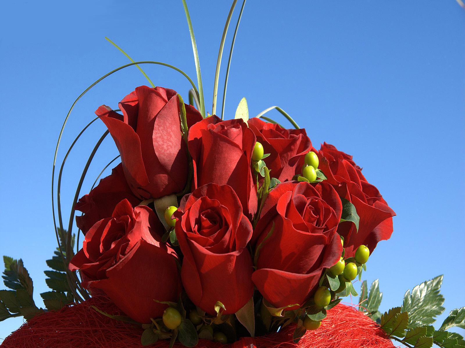Een bosje rode rozen met donker blauwe lucht
