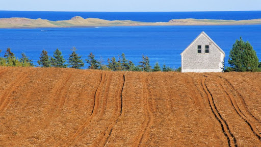 Farm Near French River, Prince Edward Island, Canada.jpg