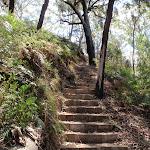 Climbing (201361)