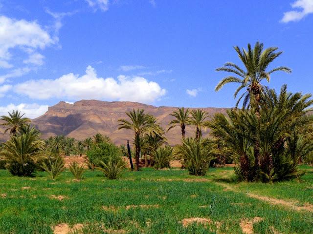 Valle del Draa
