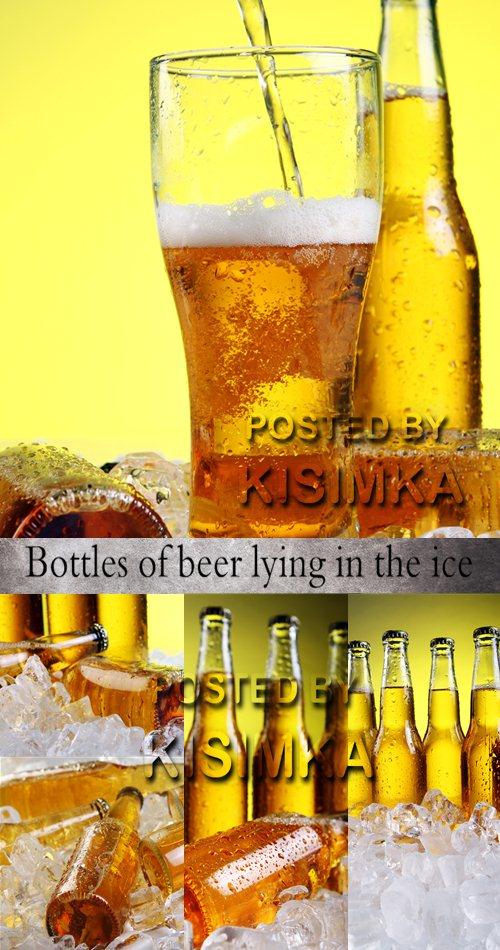 Stock Photo: Bottles of beer lying in the ice