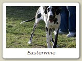 Easterwine