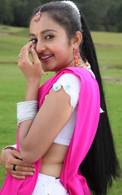 Indian saree south half