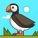 Rajesh V