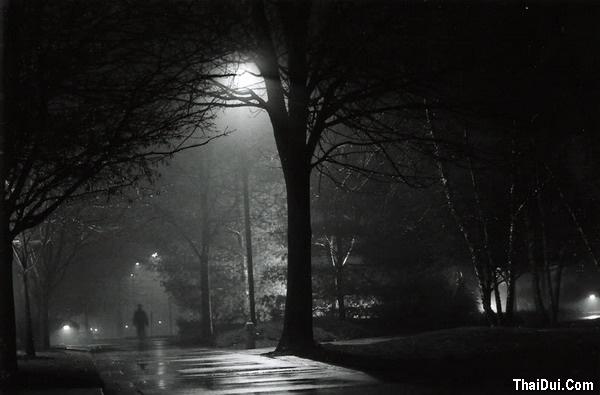 thơ đêm đông cô đơn
