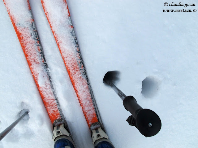 schi de tură, portanta pe zăpada