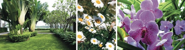tropic garden cong vien