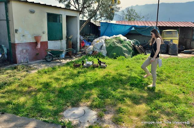 Агротуризм в Италии, Помпеи