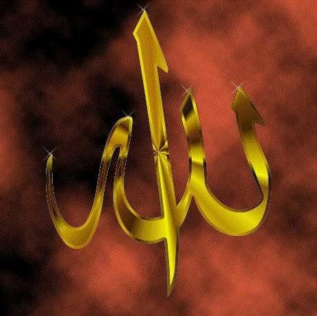 Inam Sheikh Photo 14