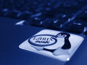 Linux Kernel 3.9.0