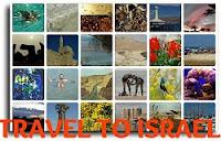 Экскурсии по Израилю