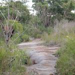 Track passing over more rocks platform (53798)