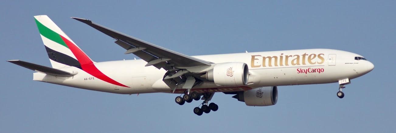A6-EFE