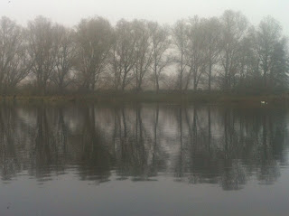 Fog at Whitlingham Broad Norwich