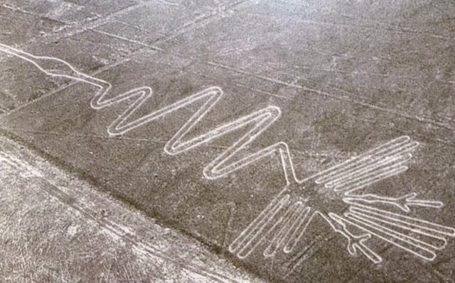 Las líneas de Nazca - El alcatraz - HistoriadelasCivilizaciones.com