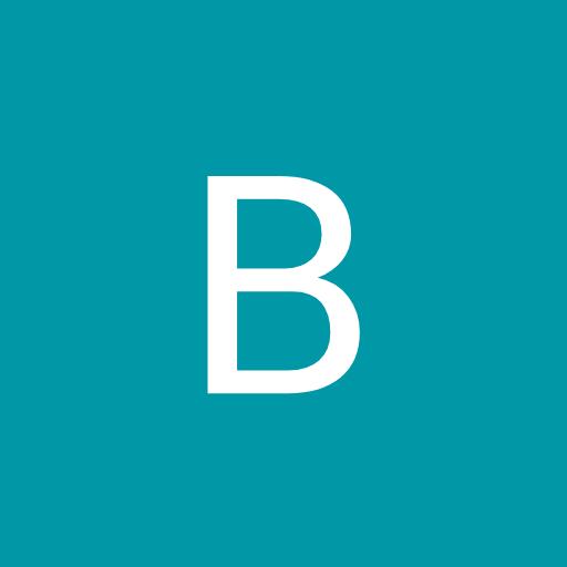 burtlib666