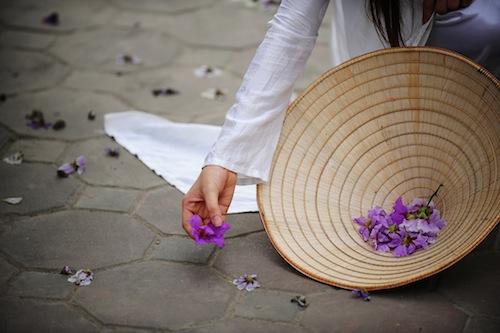 Ảnh nhặt cánh hoa bằng lăng tím rụng