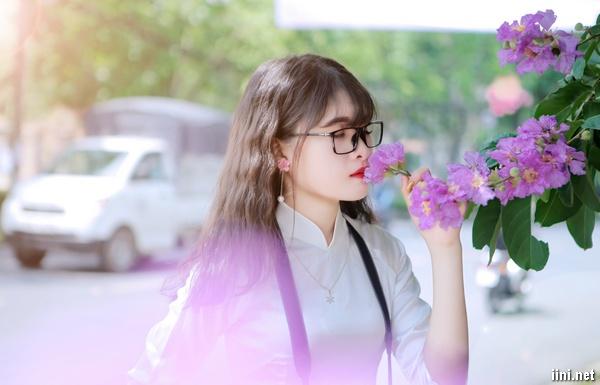 cô gái bên cây bằng lăng tím mùa hè