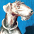 Victor Kalbskopf avatar image
