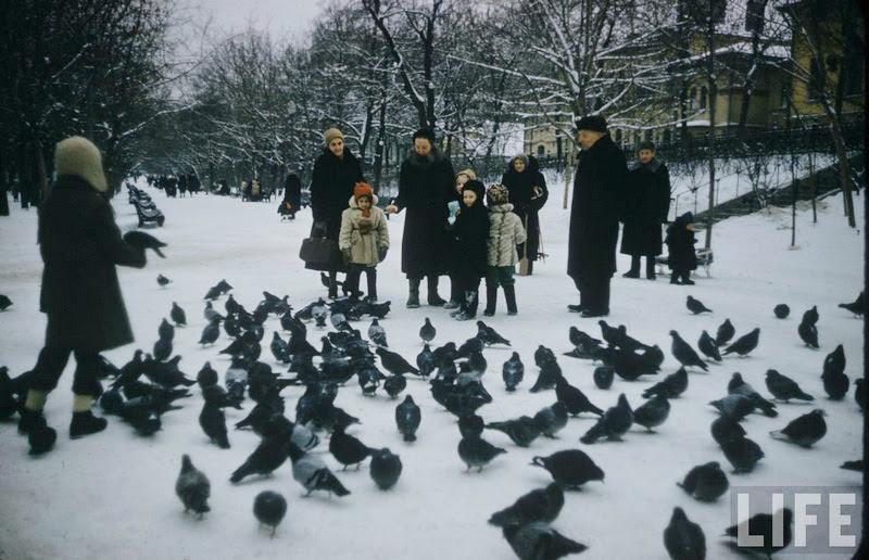 фотографии, история, ссср, 50-е, музей детства