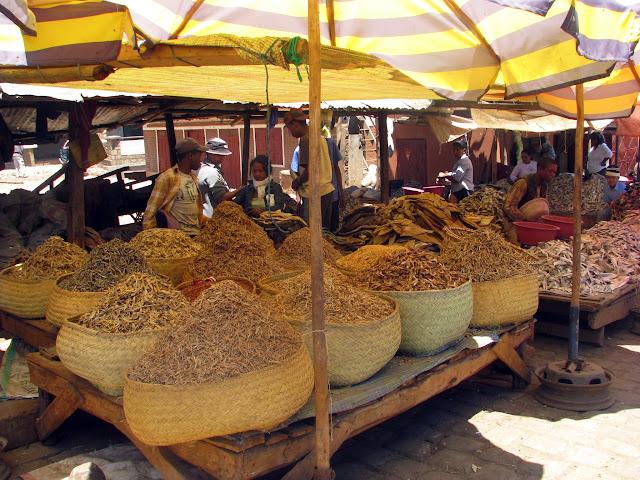 صور من مدغشقر Madagascar 14846617146