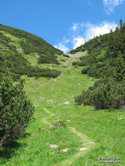 Retezat Trail Race - spre Saua Plaiul Mic