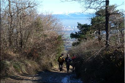 Vista de Gasteiz camino de los caseríos