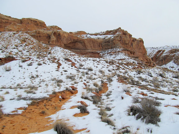 Starting up the old road on the east side of Horseshoe Canyon