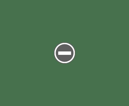 Combin frigorifica FULL NoFrost SAMSUNG RL60GZGIH SPATE Combina frigorifică SAMSUNG RL60GZGIH   Full NoFrost