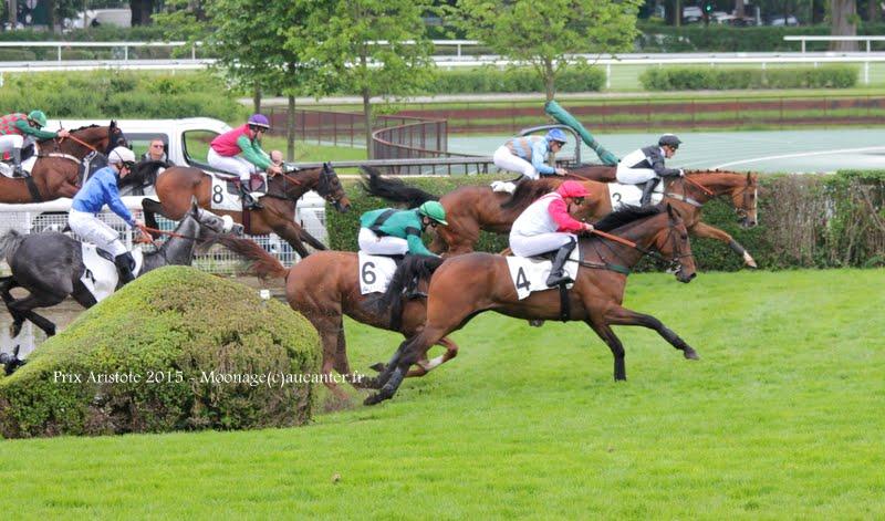 Photos Auteuil 16-05-2015 Week-end printanier de l'obstacle  IMG_9320