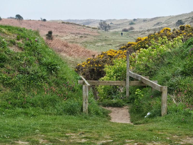 Proppsed route through the Winterton dunes