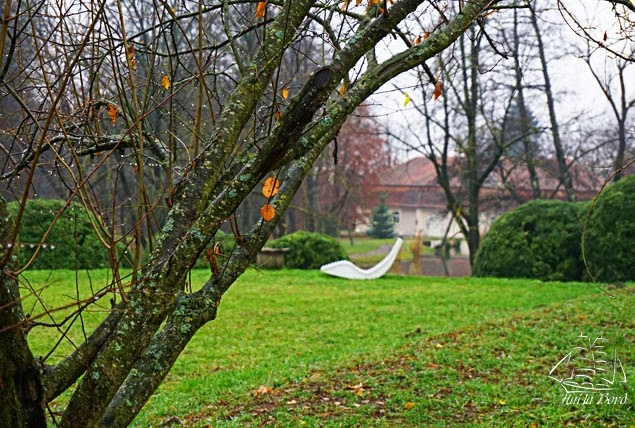 parc mikes covasna