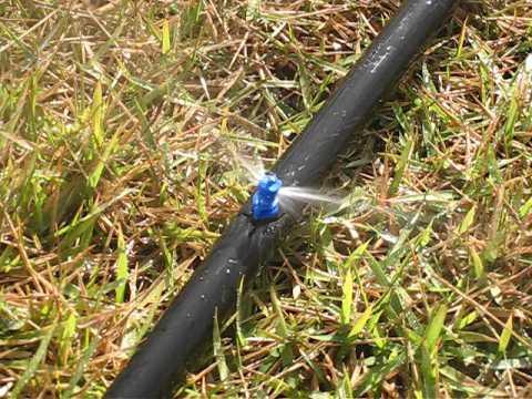 Irrigar micro aspersores e nebolizadores for Aspersores agricolas