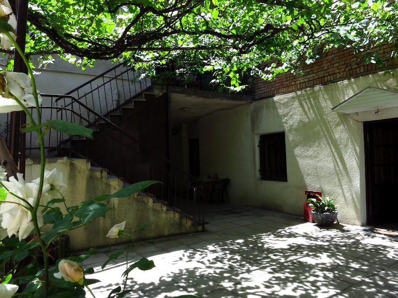 Guesthouse courtyard
