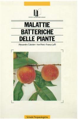 Manuale - Alessandra Calzolari, Ivan Ponti, Franco Laffi – Malattie batteriche delle piante (2009) Ita