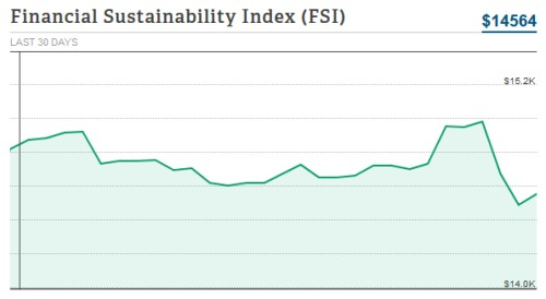 personal capital FSI financial stability index