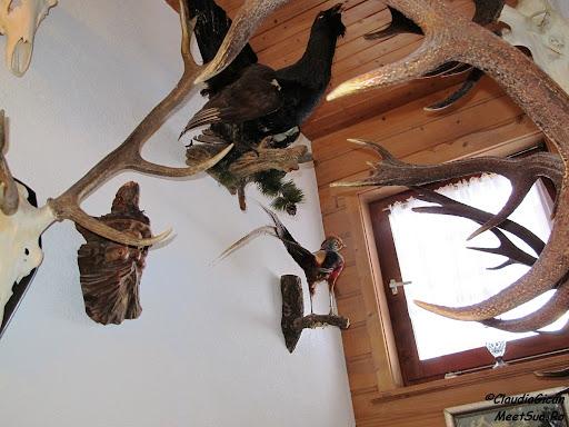Ornamente des întâlnite în Tyrol...