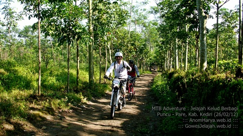Melewati kawasan perkebunan di Kecamatan Puncu (Kab. Kediri)