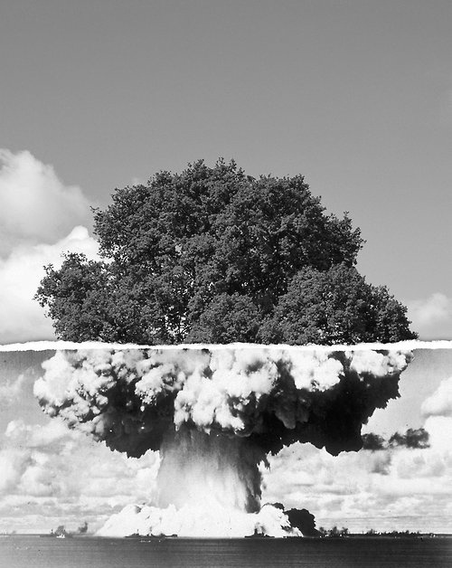 Nuclear Tree