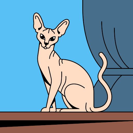 Zai Uri