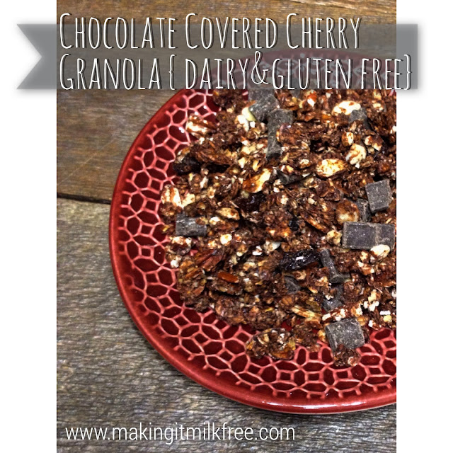 #dairyfree #glutenfree #granola #chocolate